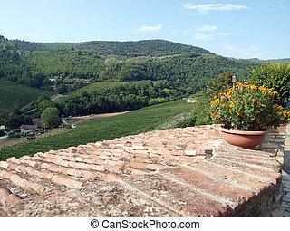 老, 屋頂, ......的, the, tuscan, 別墅, 在中間, 葡萄園, 以及, an, 橄欖, 小樹林