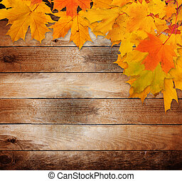 老, 木制, 离开, 秋季, 明亮, 背景, grunge