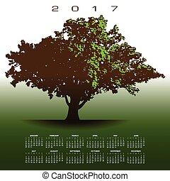 老, 橡樹, 大, 2017, 日曆, 光榮