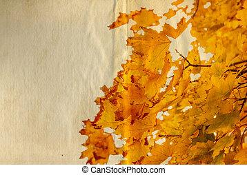 老, 紙, 由于, 秋季离去