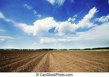 耕された 分野, と青, 空, 中に, 日没