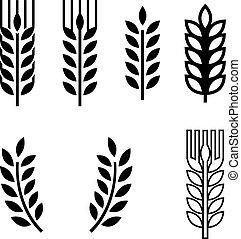 耳, spica, 小麦, コレクション, アイコン