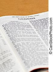聖書, -, ページ, 起源