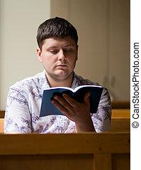聖書, 読書, 人, 若い