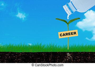 職業, 成長, 概念