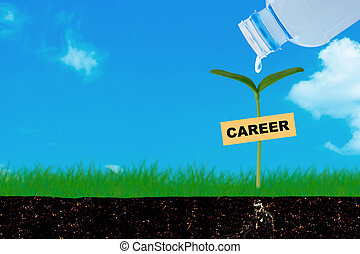 職業, 概念, 成長