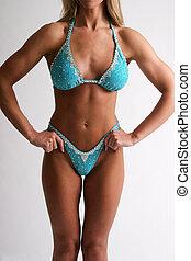 肌肉, 上, 女性, 軀幹