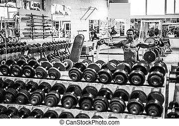 肌肉, 人行使, 在, 體操