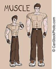 肌肉, 卡片, 人