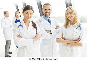 肖像画, 医学, グループ, チーム