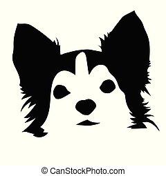 肖像画, chihuahua