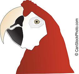 肖像画, macaw, オウム