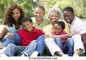 肖像, 在中, 大家庭, 团体, 在公园中
