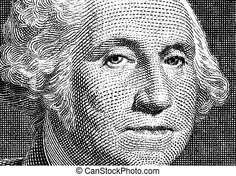 肖像, ......的, 總統, washington.