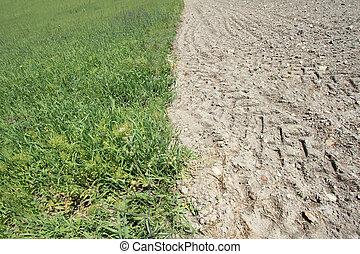 肥沃的陸地, 以及, 貧瘠, 陸地