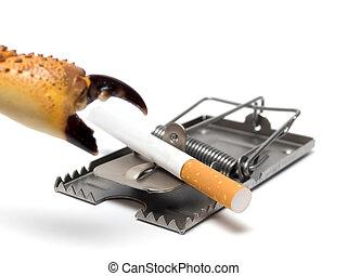 肺癌, 防止