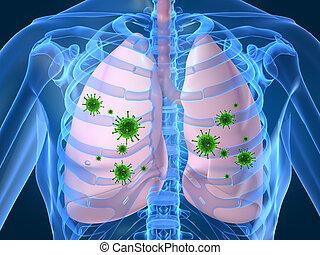 肺, 伝染