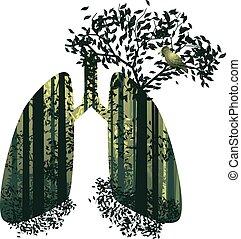 肺, 森林, 中