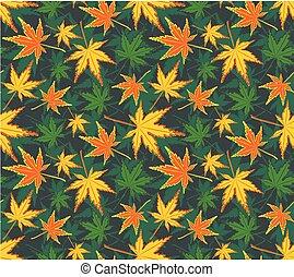 背景, かえで, leaves.