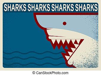 背景, イラスト, poster., ベクトル, デザイン, サメ
