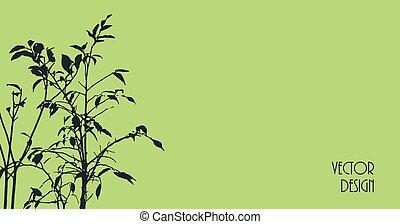 背景, シルエット, 植物