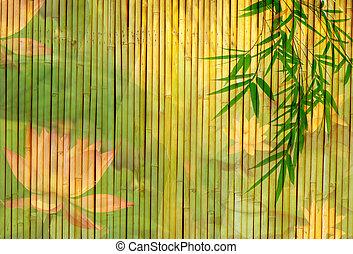 背景, ロータス, 竹