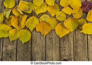 背景, 古い, 秋, 黄色, 木製である, 葉