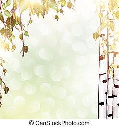 背景, 夏天, 樺樹
