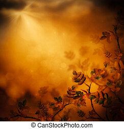 背景, 秋季, 设计, 植物群