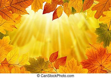 背景, 秋