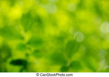 背景, 绿色