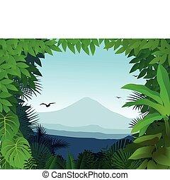 背景, 自然
