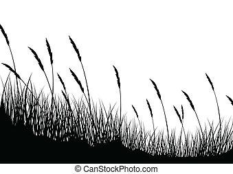 背景, 草
