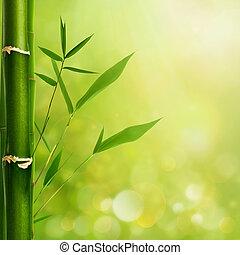 背景, 葉, 自然, 竹, 禅