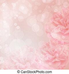 背景, bokeh, ピンクは 上がった, 美しい