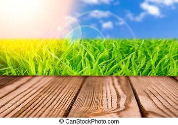 背景, floor.natural, 春, 日光, 上に, 緑, 木, 庭, 新たに, bokeh