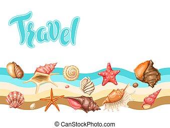 背景, shells., seashells., トロピカル, 軟体動物, 水中