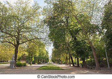 胡同, sorrounded, 在以前, 绿色的公园