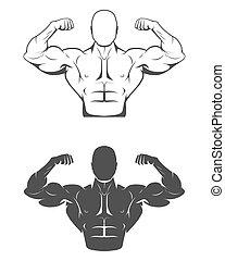 胸部, 强壮, 三头肌, 完美, abs, 人, 肩, flexing肌肉, 二头肌, 他的, bodybuilder