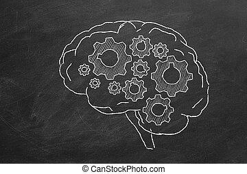 脳, ギヤ