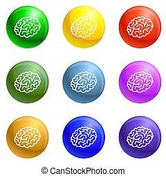 脳, セット, 人間, アイコン