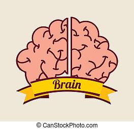 脳, デザイン