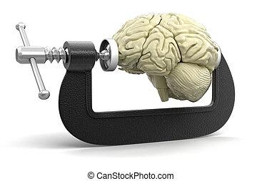 脳, 中に, クランプ