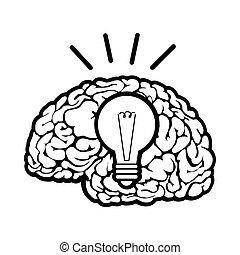 脳, 人間, 印