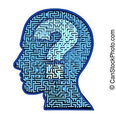 脳, 人間, 研究