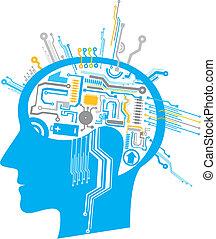 脳, 回路