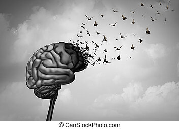 脳, 損害
