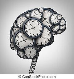 脳, 時間