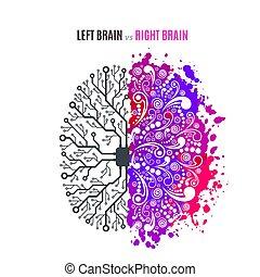 脳, 概念, 権利, 左