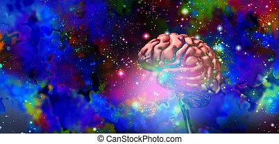 脳, 科学